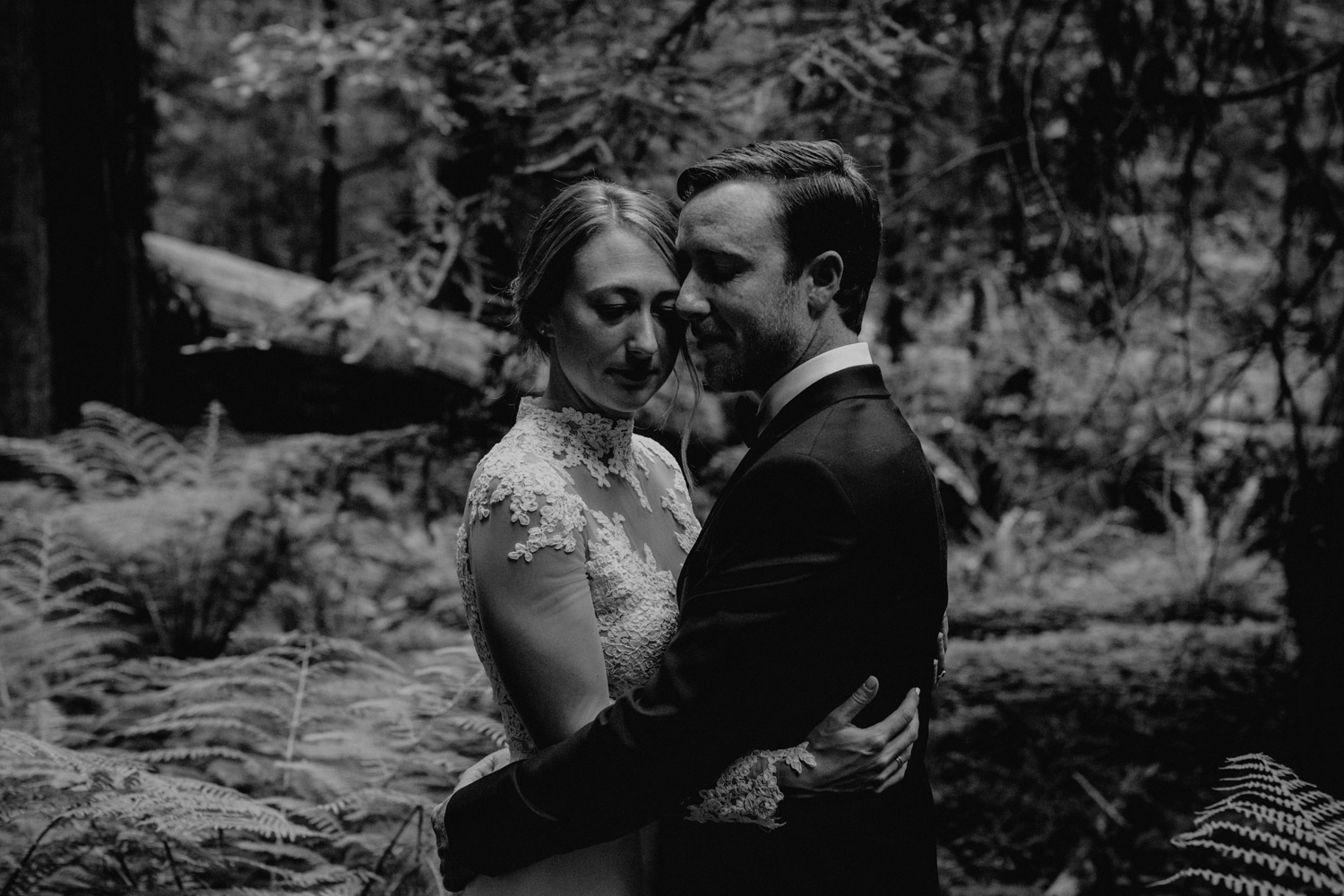Humboldt Redwoods State Park wedding photographer